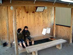 sagiashiyu.jpg